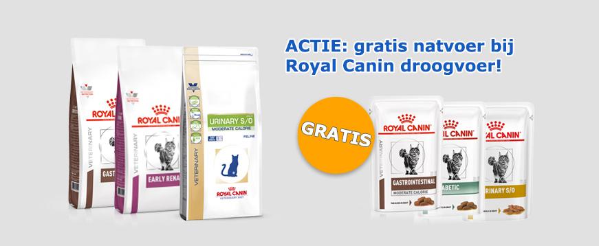 Gratis Royal Canin natvoer bij aankoop droogvoer voor je kat
