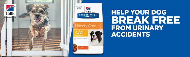 Lekkere verrassing voor je hond bij Hill's Prescription Diet Urinary