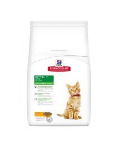 Hill's Feline Kitten