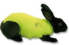 Medical Pet Shirt Konijn Groen