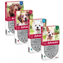 Advantix Spot-On Hond