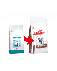 Royal Canin Gastrointestinal Hairball Cat