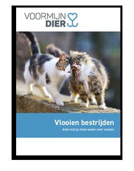 E-book over vlooien bij katten